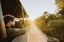 来非洲怎么能错过Safari!我在非洲最大的国家公园之一克鲁格游猎,这次租了suv自驾,自由涉猎,寻