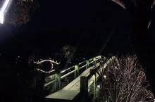 夜晚的湘湖,如夜里的明灯,十步一景。很宁静。