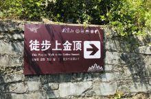 武当山打卡,徒步上金顶,从海拔300米的地愣是走台阶上到了海拔1600多米的山顶