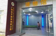 广西桂平国家地质公园博物馆