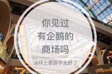 土豪国的阿联酋Mall  阿联酋购物中心  规模非常大,大型玻璃拱顶豪华恢弘,建筑有欧洲风格。有大型