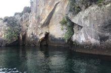 新西兰陶波湖游泳