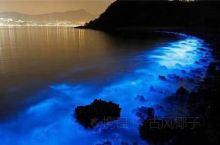 """沙滩有荧光的、星星的、巧克力的、绿的、紫的…您知道都在哪里能看到吗?  """"有毒的""""荧光海滩:荧光"""