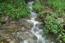 细雨绵绵 小溪流淌
