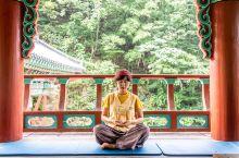住进寺庙中 和外国人一起打坐敲木鱼 | Temple Stay  一直想住一次寺庙,终于在韩国找到了