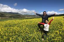 卓尔山最美的时候在七月,那时油菜花开在山谷里,层层叠叠交错的是一片片金黄色。