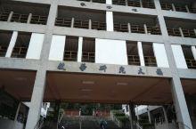 就在东海大学一偶,对于游客,老实说建筑楼不是很特别很漂亮,大概每所大学都有类似的科系大楼,为啥要说呢