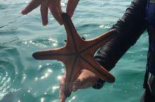 仙本那潜水爱好者的圣地,水屋很赞潜水也有看到海龟哦