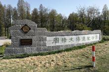 洪泽湖周桥大塘遗址公园
