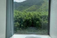 落地窗环绕大浴缸,望着竹海泡澡,这才是网红酒店民宿的标配!心心念念要来课间,除了吸引我的无边泳池,还