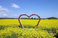每个季节都有到济州岛的理由  济州岛是韩国最大的岛,属于济州特别自治道管辖,面积1845.5平方千