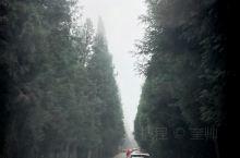 图片为重庆石柱千野草场景区