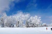 来东北不滑雪不泡温泉 ——等于错失一个亿 长白山周围这两年新开的一处雪厚,人少,设备齐全的滑雪场 这