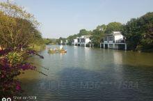 河源万绿谷很不错,景美,鱼鲜,同事们都说这一趟来得很值!