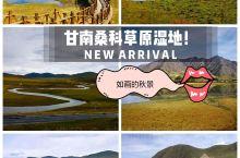 甘南另一颗草原明珠--桑科湿地公园及桑科草原。 桑科草原位于甘肃省甘南藏族自治州夏河境内,距夏河县城