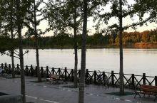 清晨的潮白河畔。