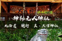 日本探秘 | 遗落的神社,骑行路上的偶遇  大沼就在北海道函馆不远的地方,后花园般的地方。坐JR火车