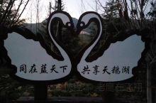 三门峡天鹅景区