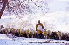 乌兰布统大草原不只是夏季和秋季才美 ,最值得推荐的是它的冬季白雪皑皑、视野开阔的美景。 坐着越野车穿