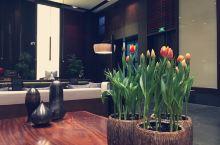 在徐州市中心有这样一家酒店,置身其中,你会忘却自己身在车水马龙、灯红酒绿的城市之中,犹如一个世外桃源