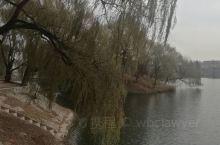 滨河城市湿地公园是国家AAA级旅游景区,是寿光市城区内一处比较大的景观湿地。湿地公园北起金东街,南至