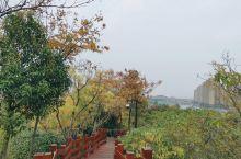 来徐州后第一次去金龙湖,冬天人有点少而且那天天气不是很给力,但是风景很不错,进去后让人瞬间心里觉得很