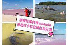 推荐来坎昆的游客们一定要打卡的景点就是—网红粉红湖!接待的游客拍的太美了! 更多墨西哥游玩欢迎向我咨