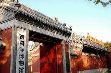300年后终于开放的秘境_西黄寺