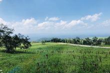 长白山之行 在八月到达长白 经过漫长的等待后搭乘大巴车上山 盘山路一圈又一圈 看着白云越压越低 从西