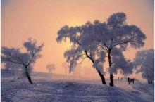 【东北去看雪——玉洁雾松@吉林】隆冬时节的吉林市,松花江的堤岸经常可以看见松柳凝霜挂雪,戴玉披银,如