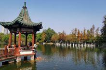 广东四大名园之二 可园始建于清朝道光三十年(公元1850年),至1864年才基本建成。面积2204平
