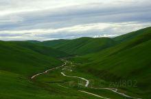 毛埡草原,相克宗到理塘中间是一片高山草甸:毛埡草原。一出相克宗村就是网红打卡的天路十八弯,慢慢爬,上