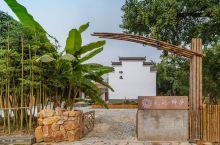 枰:出自《上林赋》(司马相如),是银杏的雅称。银杏又名长寿树,是皇家园林中不可缺少的树种之一。十里古