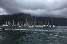 浓浓晨雾中的豪特湾