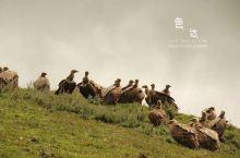 四川色达, 有生之年必去的信仰之地   如果四川西部选一个地方,有生之年一定要去的,我会选择位于四川