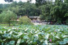 这是韶山乡村常见的民居,传统的土坯房,伟大领袖毛泽东就诞生在这里,故居内部还保持着原来的样貌,陈设简