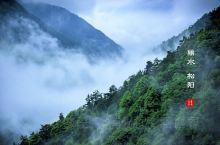 5月中旬我们在丽水松阳的茫茫云海之间,翻山越岭,访问了深山里云端里的有着600年历史的陈家铺村,是崖