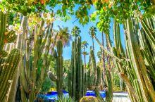 """马拉喀什是一座""""神域""""城市,坐落于贯穿摩洛哥的阿特拉斯山脚下,有""""南方的珍珠""""之称。 马拉喀什最著名"""