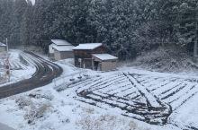 白川乡的早上,出门一脚踏空,雪盖过了脚腕,就差点到了小腿,找车也费劲,清理车上的雪到出发花了1个多小
