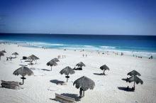 南美第75天    坎昆海豚海滩,距坎昆市区16.8公里,R1路公交车,20比索,出租车200--2