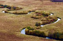 """额尔古纳湿地...... 「额尔古纳河」湿地是中国目前保持原生态最完好、面积较大的湿地,也被誉为""""亚"""