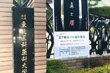 来仙台感受高校文化氛围-东北大学 乘坐飞机或者是火车来到仙台以后可以坐公交车直接在东北大学站下车就可
