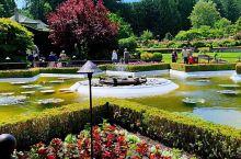 【布查花园】 加拿大维多利亚布查花园是世界闻名的花园之一,这是布查夫人随丈夫来加拿大后,发挥她对花园