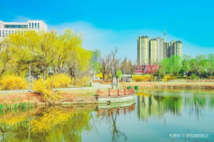 臨沂國際雕塑公園1