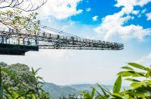 世界第一天空悬廊在重庆,载入吉尼斯世界纪录,号称恐高症终结者 目前国内最红的旅游城市是哪一座?不是北