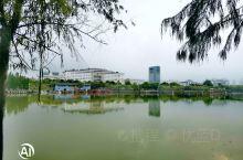 来宾政府前湖景是个跑步好地方,景色宜人,不信你来看看