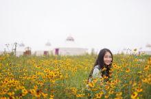 和许许多多的人一样,每年的夏秋季节总有一份对草原的向往,这几年,我去了呼伦贝尔的冬季,去了锡林郭勒的