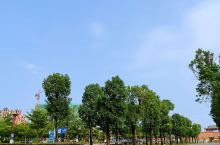 醉于美景~遂溪孔子文化城 这里的景色值得一看,特别漂亮特别美! 四季如春      来到这里,一片绿