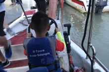 到了吉隆坡,去看完了猴子,去了红树林坐船去看萤火虫和蓝眼泪,由于萤火虫实在是没有办法拍照,只能给大家