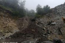 感受一下大自然,原始森林,西藏自治区日喀则地区定结县陈塘沟